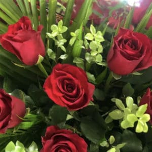 Bouquet of 6 Long-stemmed Red Roses Valentines Day Flowers Port Macquarie