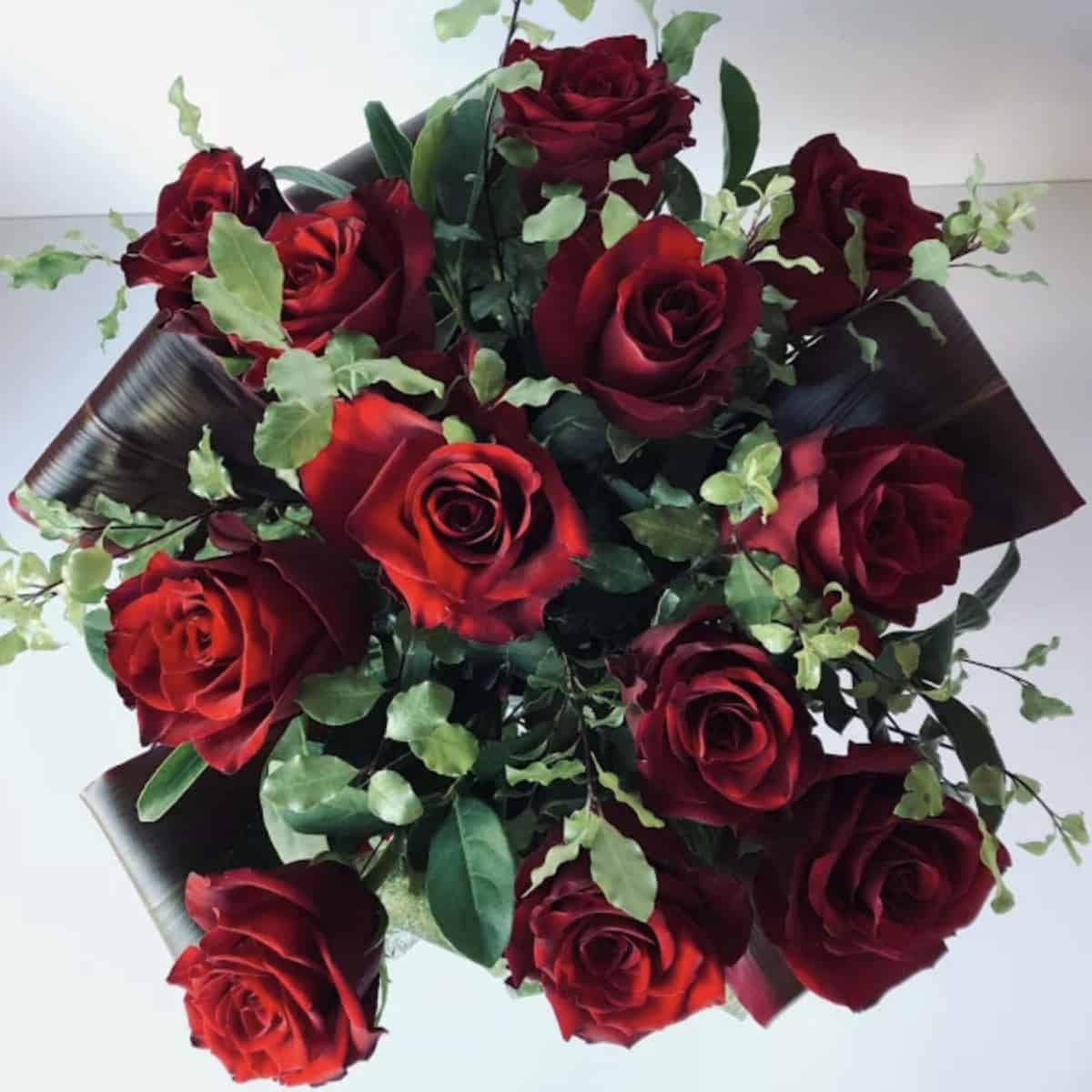 Romantic Bouquet of 12 Beautiful Long Stem Red Roses Valentines Day Flowers Port Macquarie